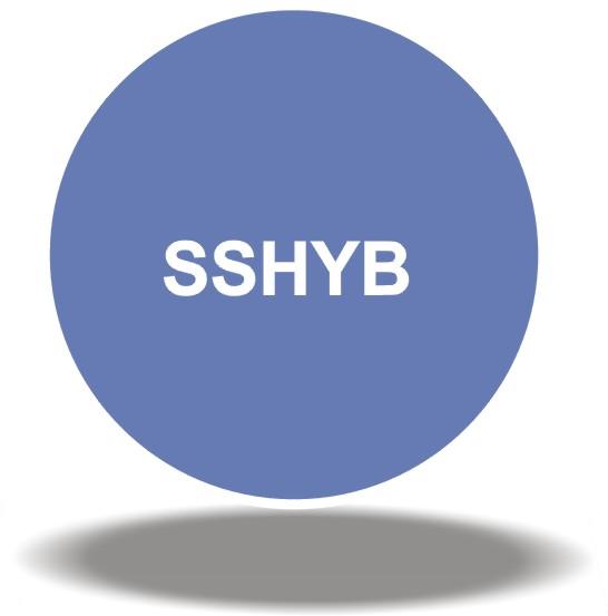 SSHYB